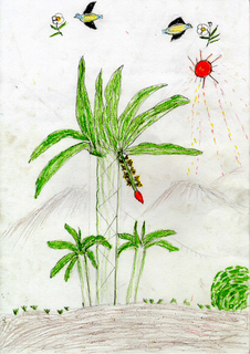 Myanmar_Draw_3-85_Nyo14F_a.jpg