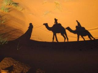 sun-sand-camels.jpg